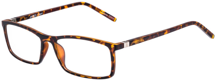 PRESCRIPTION-GLASSES-MODEL-JAMES-TORTOISE-45