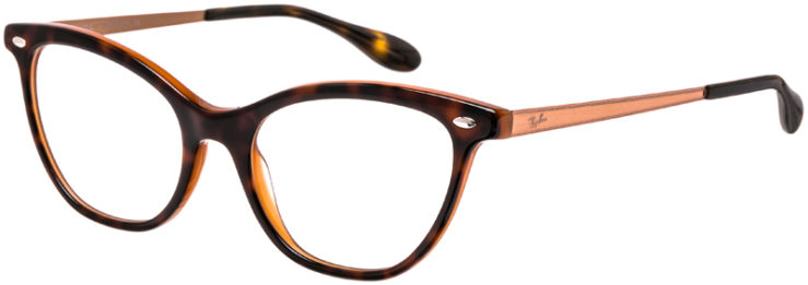 RAY-BAN-PRESCRIPTION-GLASSES-MODEL-RB5360-5713-45