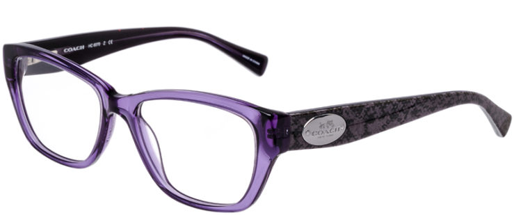 PRESCRIPTION-GLASSES-MODEL-COACH-HC-6070-PURPLE_WHIP-SNAKE-EGGPLANT-45
