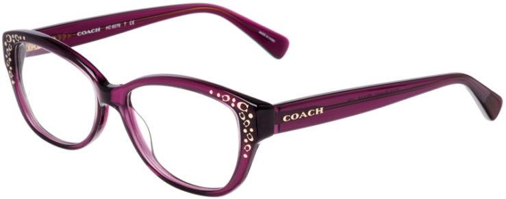 PRESCRIPTION-GLASSES-MODEL-COACH-HC-6076-PURPLE-45