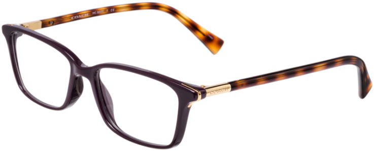 PRESCRIPTION-GLASSES-MODEL-COACH-HC-6077-PURPLE-DARK-TORTOISE-45