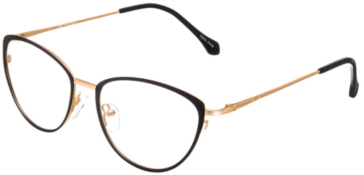 PRESCRIPTION-GLASSES-MODEL-DC-170-BLACK-GOLD-45