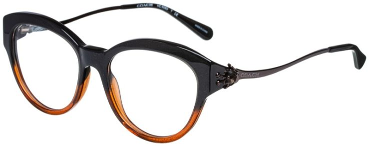 prescription-glasses-model-Coach-HC6093-Black-Amber-Glitter-Geadient-45