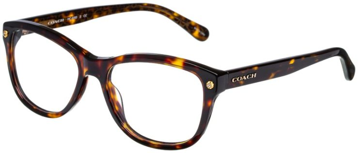 prescription-glasses-model-Coach-HC6095-Dark-Tortoise-45